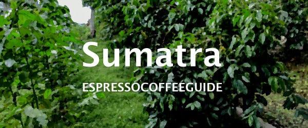 Espresso Coffee Guide