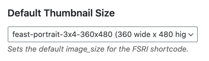 Feast plugins' default image size setting